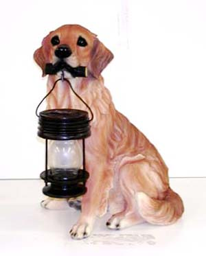 Pets with solar lanterns